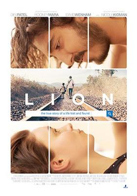 lion-5
